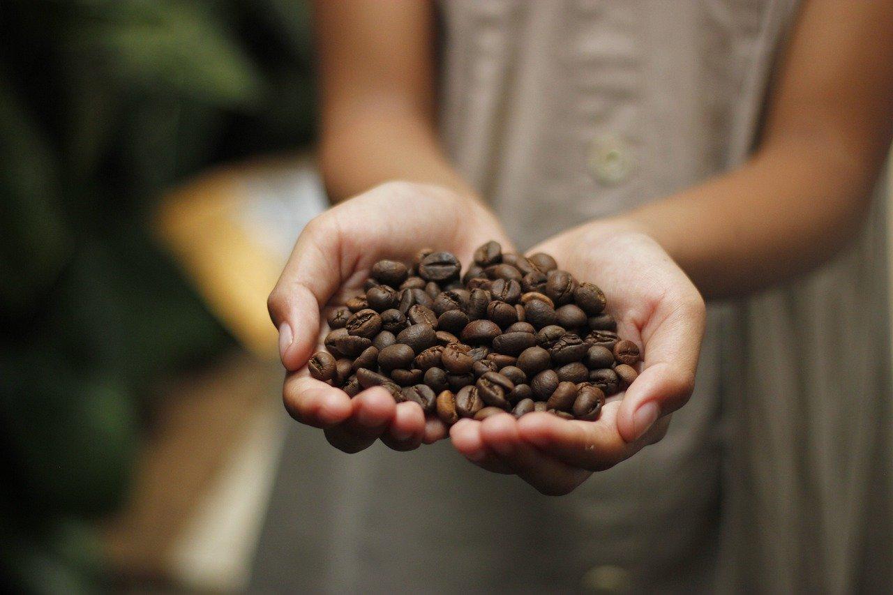 Cafenea Victoriei sector 1 - Cafea, boabe, aroma indiana