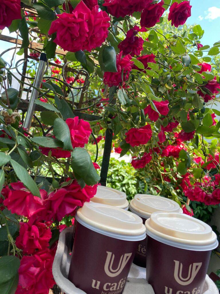 cafenea Victoriei
